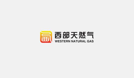 国家能源局综合司关于做好油气管网设施开放相关信息公开工作的通知